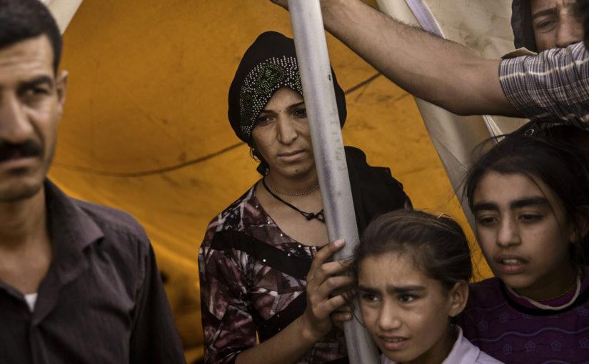 The Yazidis